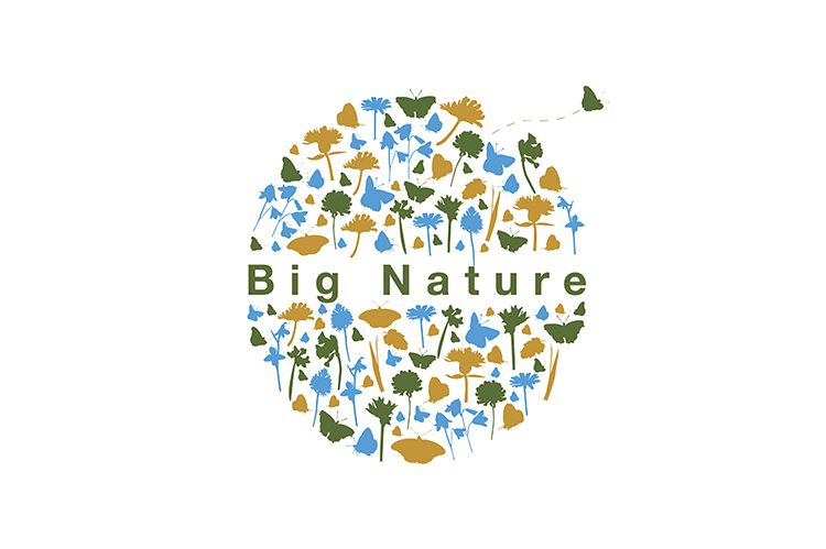 sponsor-big-nature-wide