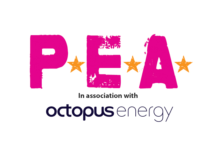 The P.E.A. Awards in Association with Octopus Energy